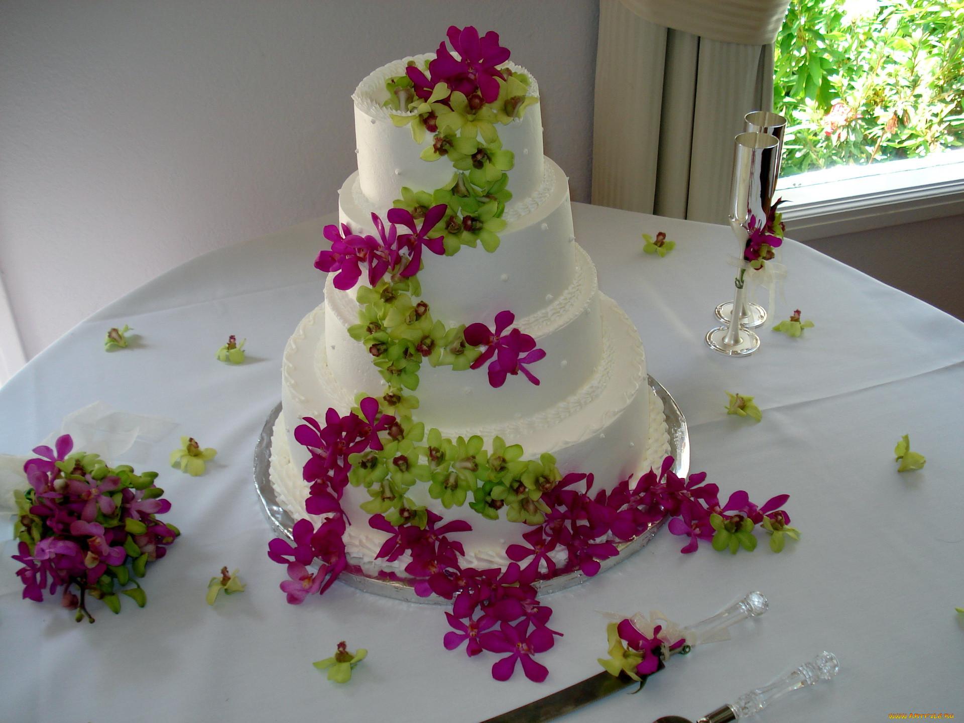 Торт еда торты обои для рабочего стола